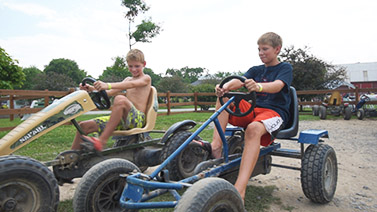 Pedal Carts Image